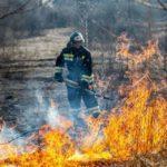У Донецькій області ㅡ найвищий рівень пожежної небезпеки