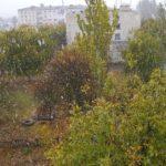 На Донеччині випав перший сніг (ФОТО, ВІДЕО)