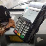 В ногу з часом: В Бахмуті один з перевізників встановив термінали для оплати проїзду карткою