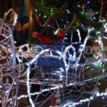 Селфі з ялинкою та спортивні розваги. Де в Бахмуті вже є новорічна атмосфера (АФІША)