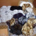 На Харківщині прикордонники затримали провідника із контрабандними шубами (ВІДЕО)