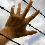 55 украинских заключенных с ОРДЛО передали Украине