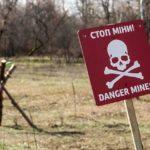На Донеччині підірвалися троє чоловіків, які збирали гілля в лісосмузі