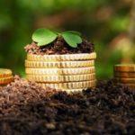На розвиток підприємства або конкретну техніку: які кредити можуть отримати сільські господарства Бахмутського району