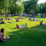 В прифронтовому Кураховому реконструюють парк відпочинку