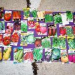 Хоспіс в Часовому Яру шукає волонтерів для висаджування овочів