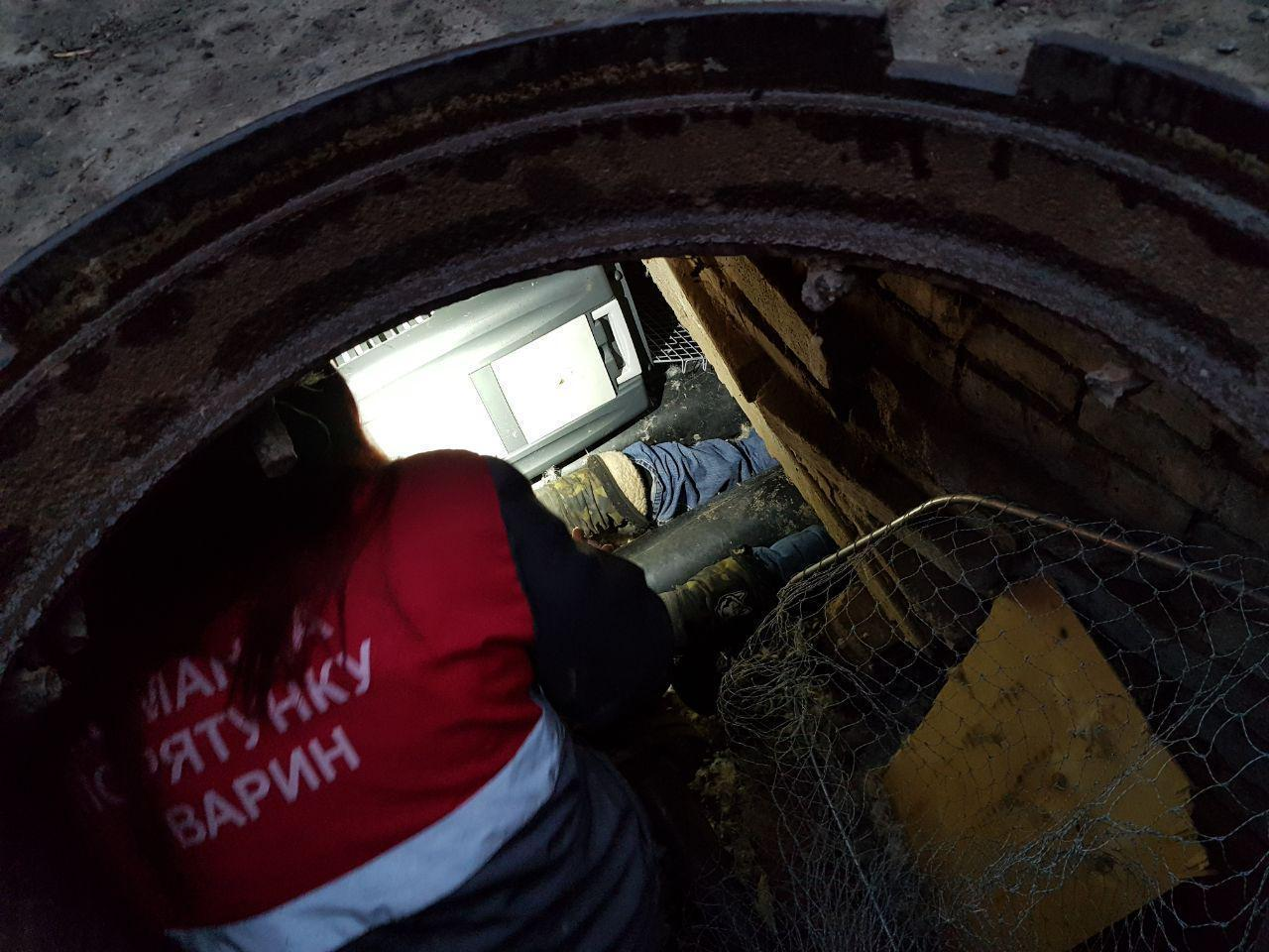 Волонтери з Києва приїхали в Дружківку щоб врятувати собаку