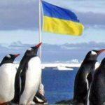 Явка виборців в Антарктиді склала 100%