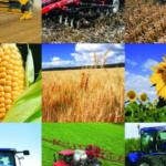 Аграрії Донеччини сплатили в місцеві бюджети більше 50 млн податків