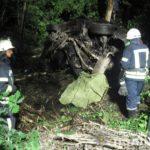 В ДТП на Донеччині загинула майже вся родина в одному авто
