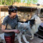 Як та для чого працює єдине в Бахмуті товариство захисту тварин (РЕПОРТАЖ)