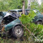 Смертельна аварія на Донеччині: легковик влетів в дерево
