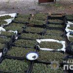 В Донецькій області стали продавати більше наркотиків (і по кількості, і по видах), — поліція