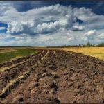 ОТГ Донеччини зможуть стягувати плату за землю з недобросовісних платників