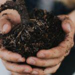 Земельну реформу проведуть до кінця року, — Зеленський