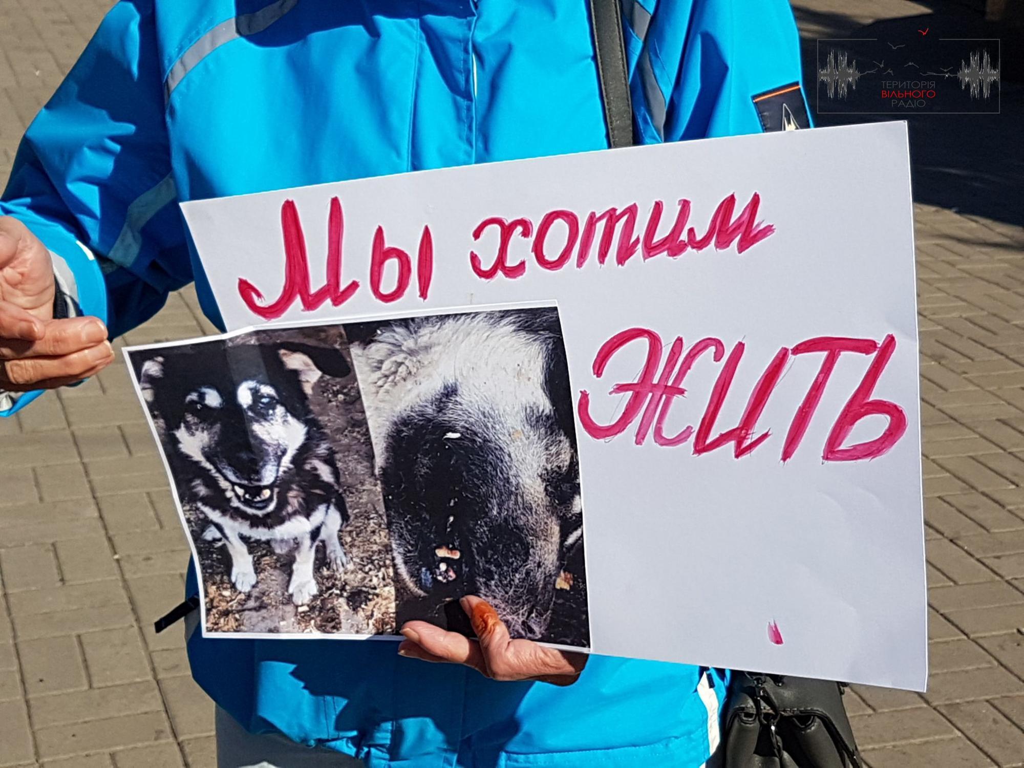 На Донеччині протестують зоозахисники. Вимагають розірвати контракт з ймовірними догхантерами