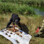 У Павлополі з річки виловили майже півтори тисячі вибухонебезпечних предметів (ФОТО, ВІДЕО)