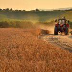 Торговать землей смогут только граждане Украины и украинские компании, – президент