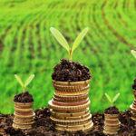 50 на 50. ЄС буде допомагати фермерам та іншим підприємцям з Донбасу виплатити кредити