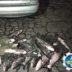 Браконьєри зі Слов'янського району виловили риби на майже 35 тис. грн. Їх упіймали