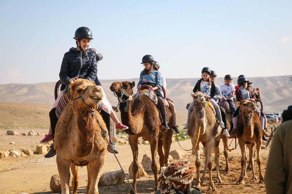 верблюди екскурсія Ізраїль