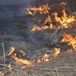 Пожежа, підрив техніки, загиблі військові та поранені цивільні: Як минули вихідні в ООС (ФОТО, ВІДЕО)