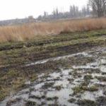 В Україні можуть обмежити використання води через маловоддя річок