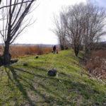 Тихіше: В Україні розпочався Сезон тиші на природі. Що це та які є заборони