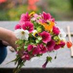 Мешканців Донеччини просять не ходити на кладовища під час карантину,  —  ДонОДА