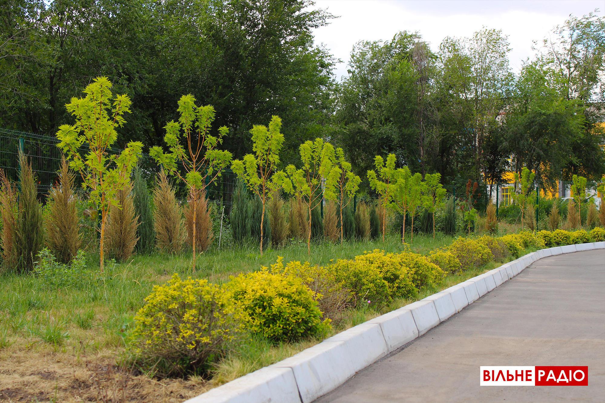 Із краси у бур'яни: На бахмутській набережній, яку побудували за 13 млн грн, посохли квіти, рослини і дерева