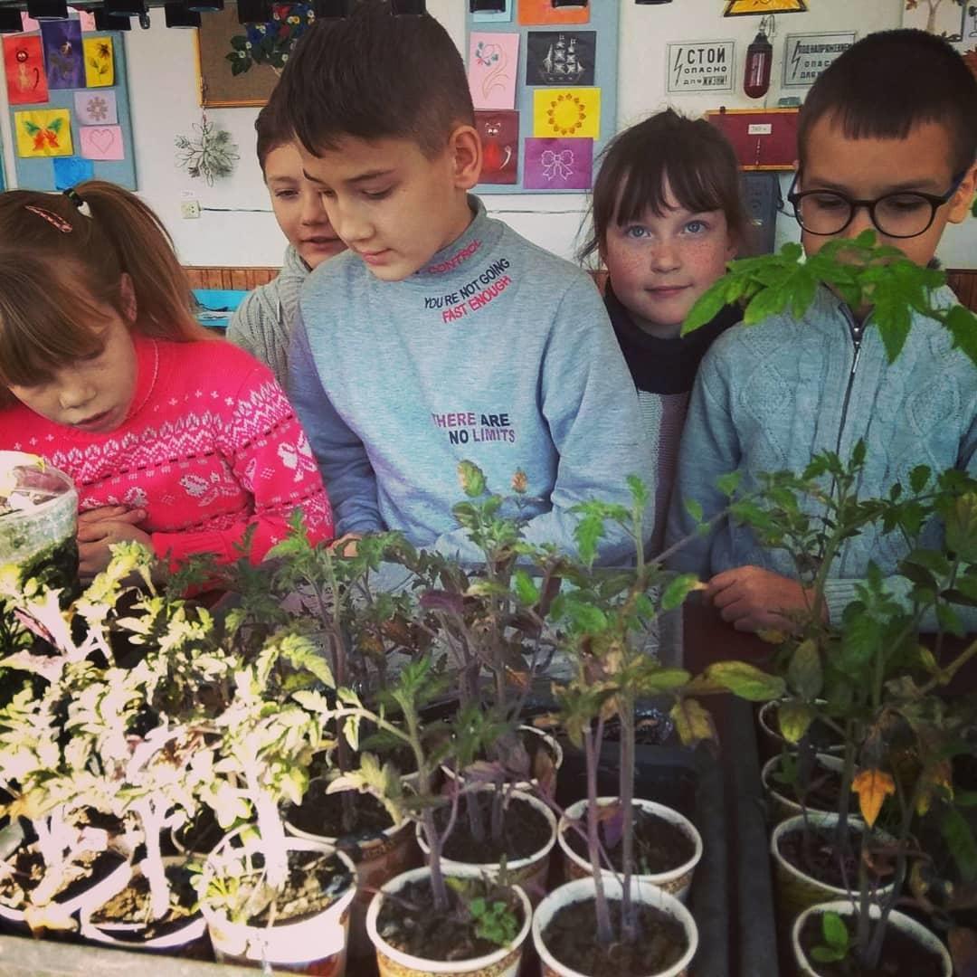 діти школярі урок праці агрохаб Донеччина