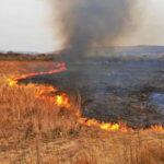 Агроному з Донеччини, який підпалив поле, загрожує до 5 років тюрми