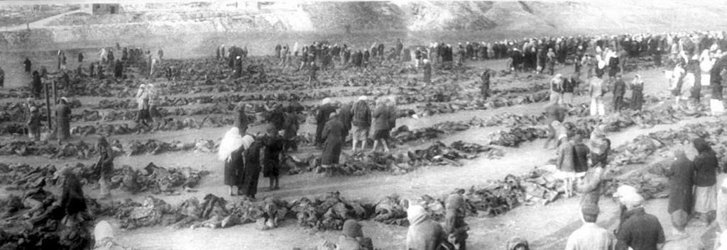 жители Бахмута останки жертв нацизма Вторая мировая война Артемовская трагедия массовое убийство