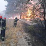 Третьи сутки пожаров на Луганщине: погибли 11 человек, села готовят к эвакуации (ФОТО, ВИДЕО)
