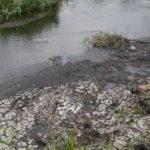 Підконтрольна Донеччина частково зневоднена: 27 ставків пересохли, ще 9 наповнені менше половини