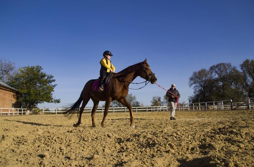 їзда верхи Добропілля, коні Добропілля, навчання їзді верхи Добропілля