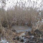 Водогін біля Торецька майже відремонтували. Воду планують дати вже завтра, — Донецька ОДА