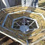 На Донетчину возвращаются аисты? За год энергетики спасли 7 гнезд (ФОТО, ВИДЕО)