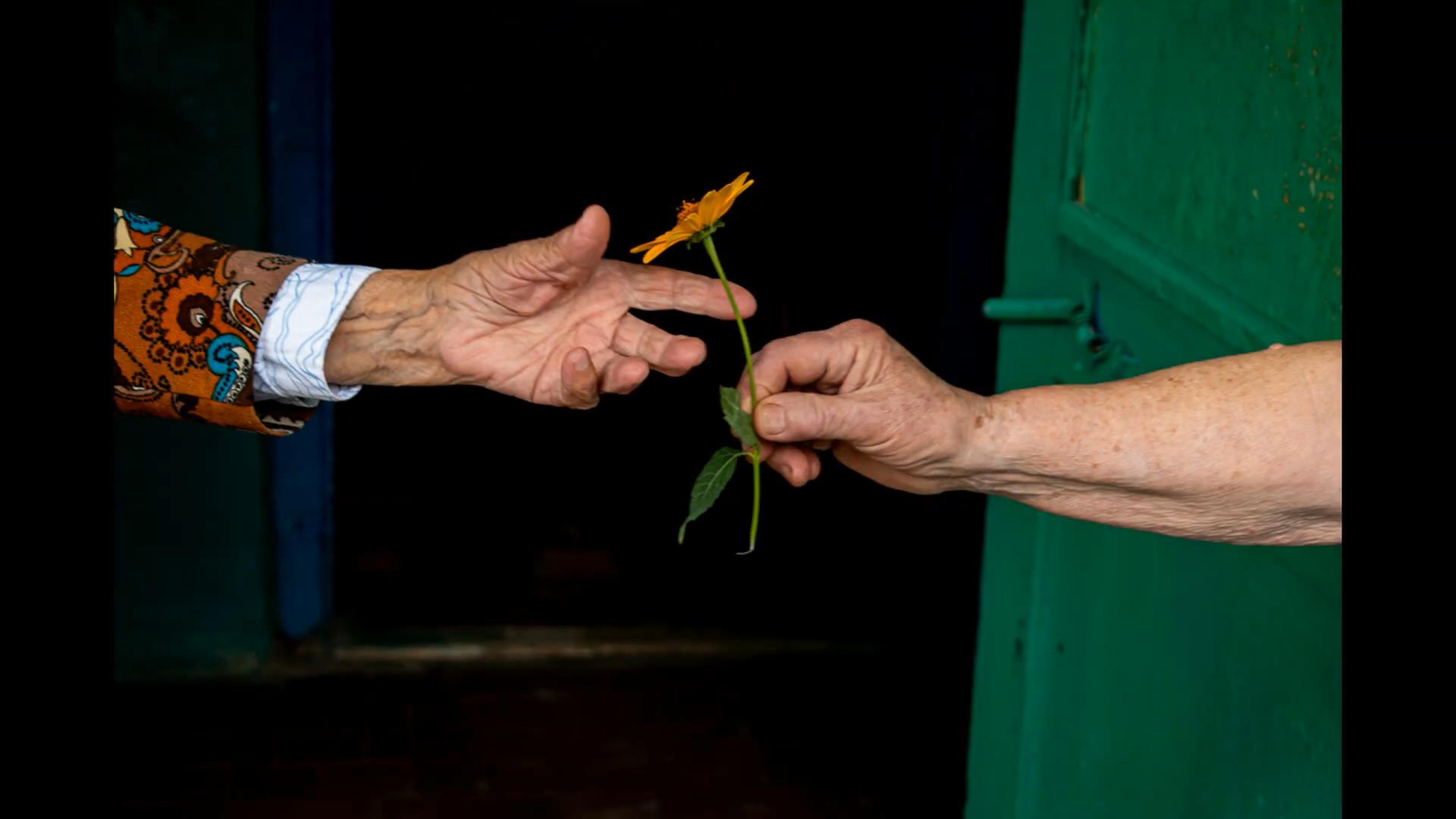 Работа на фотоконкурсе Future Photo Days Стеллы Бородиной из Славянска