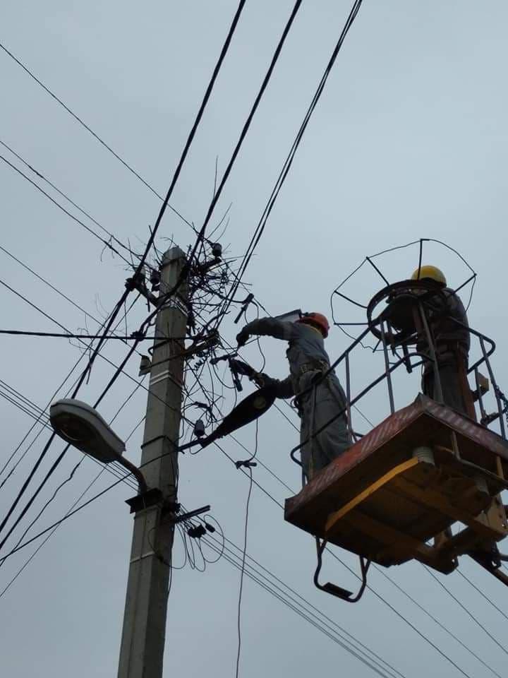 на Донетчине аисты начали вить гнездо на электроопоре