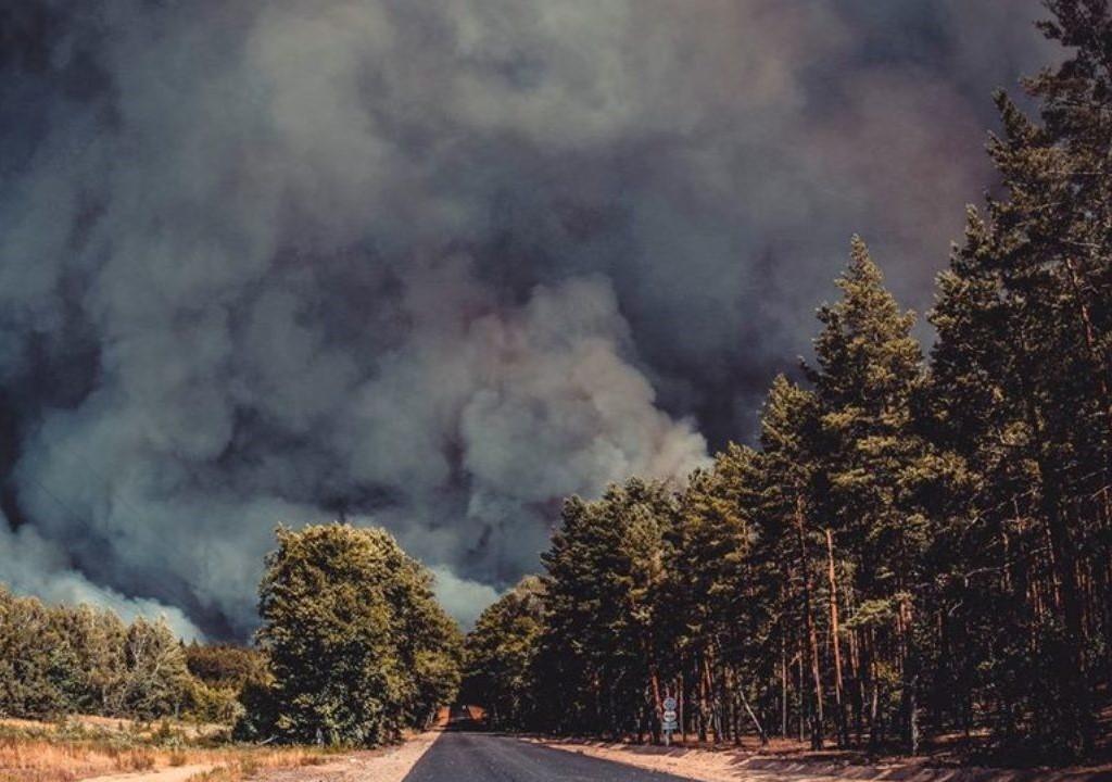 Керівника одного з відділів ДСНС підозрюють у підробці документів про гасіння пожеж на Луганщині