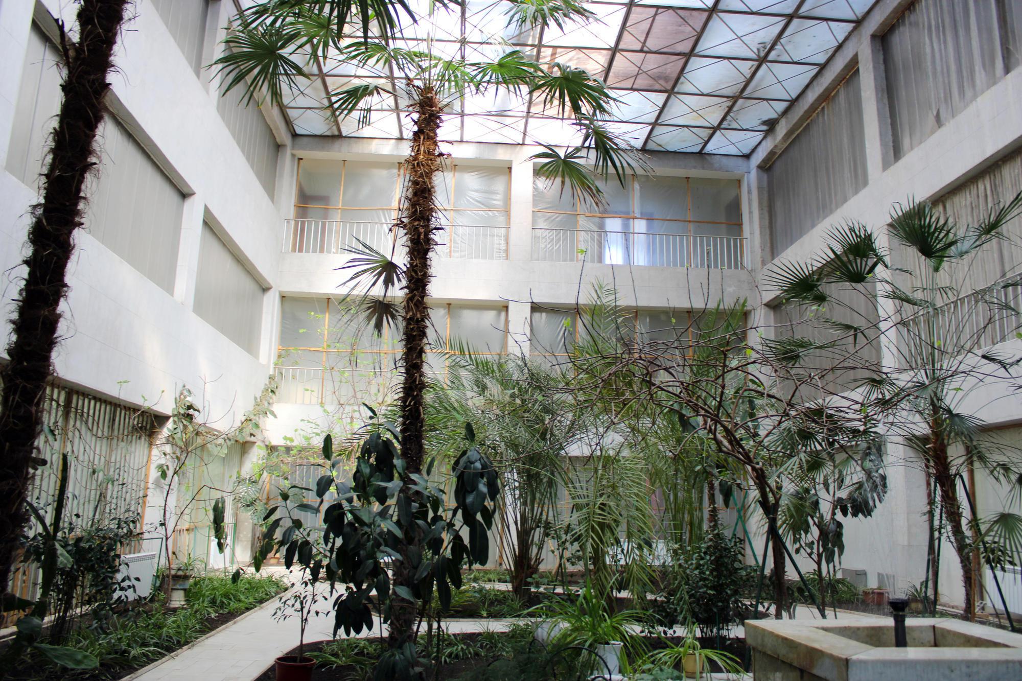 Рослини для торецього зимового саду завозили з Абхазії