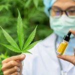 В Україні легалізували два препарати на основі канабісу. Що це за ліки й наскільки вони доступні