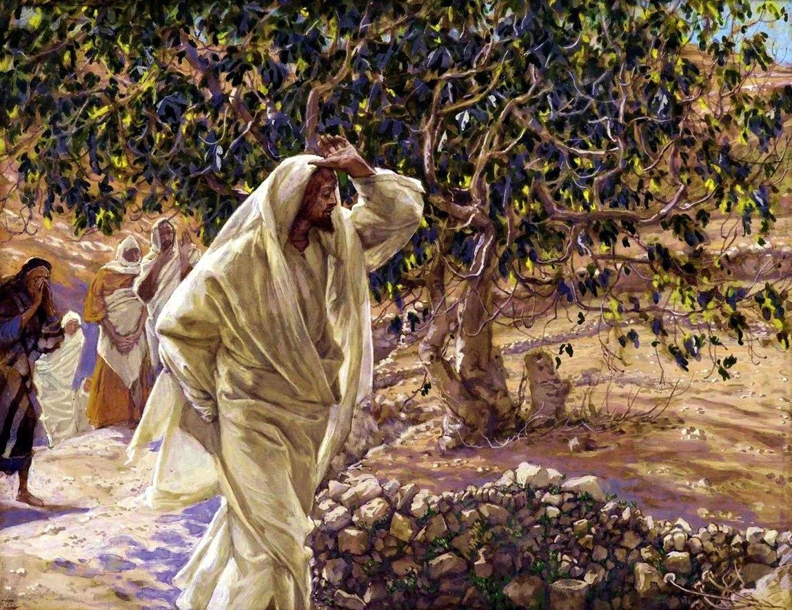 Евангельская история о смоковнице