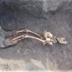 """""""Їх розорювали десятиліттями"""": На Донеччині знайшли останки ще 3 солдатів Другої світової (ФОТО)"""