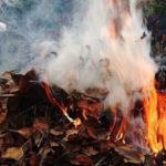 Відбувся переляком: На Донеччині підліток отримав поранення, спалюючи листя