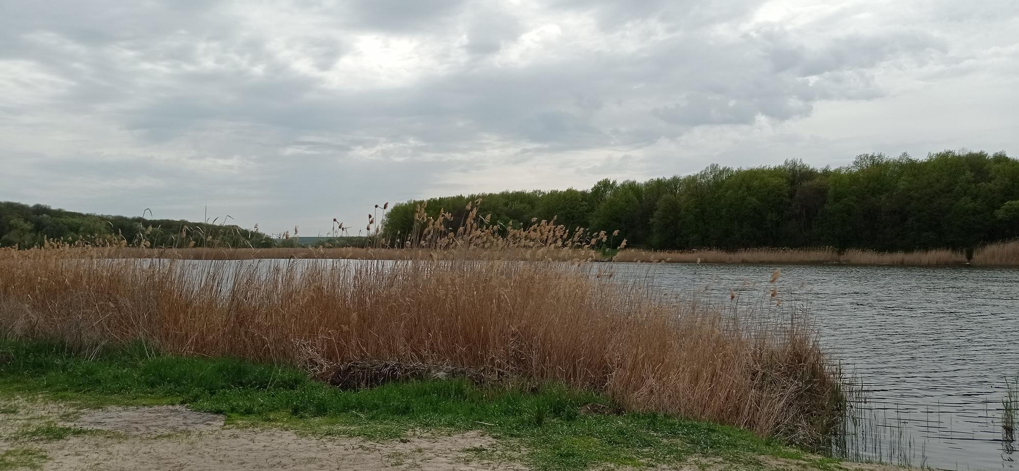 Північний пруд та річка Ближня Ступка в Бахмуті