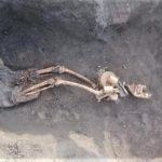 """""""Их распахивали десятилетиями"""": На Донетчине нашли останки еще 3 солдат Второй мировой (ФОТО)"""
