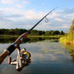 Нерест закінчився. На водоймах Донеччини знов можна ловити рибу