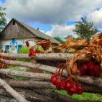 Магніт для туристів: у сільській громаді на Донеччині створять сучасний культурний комплекс